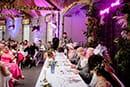 Harly-Jane + Liam - An Errol Park Estate wedding 175